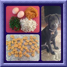 14 Best Diabetic Dog Treats Images Dog Recipes Homemade Dog