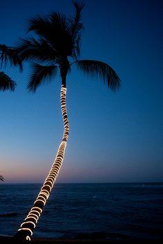 Velero Beach Resort - Cabarete, Dominican Republic by Patrick Bennett Barbados, Jamaica, Trinidad, Station Balnéaire, Tropical Paradise, Island Life, Beach Resorts, Key West, Vacation Spots