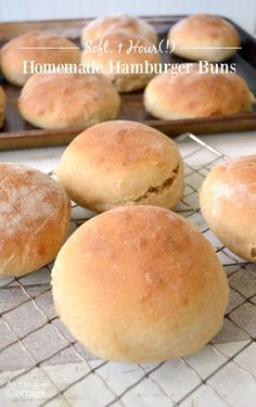A ridiculously easy recipe that makes truly soft & tender hamburger buns, hotdog buns, or breadsticks - in about an hour!