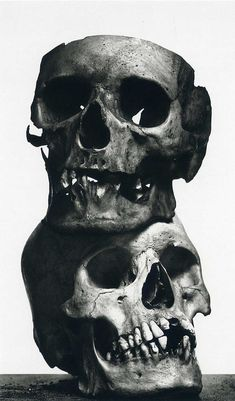 #Irving Penn Photography Still Life The Poor Lovers, 1980