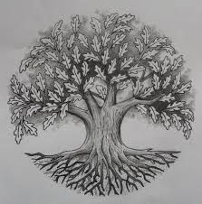 oak tree lithograph
