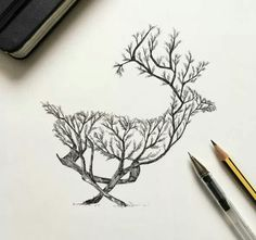 Alfred basha photos/art animal drawings, deer tattoo, how to Ink Drawings, Animal Drawings, Drawing Sketches, Animal Illustrations, Tattoo Sketches, Deer Drawing, Drawing Drawing, Drawing Ideas, Pencil Drawings Of Nature
