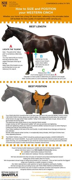 Western Saddle Placement. Why getting the position of your saddle is SO important...