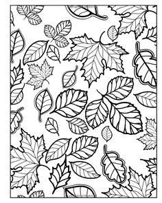 All About Autumn Coloring Book Double Pack (Volumes 1 & 2) (Art-Filled Fun Coloring Books): Various, H.R. Wallace Publishing: 9781500907211: Amazon.com: Books