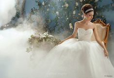 Alfred Angelo : Disney Princess Collection : Cinderella $900  http://www.alfredangelo.com/collections/styles/205
