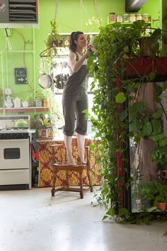Cada parte de seu apartamento transborda com folhagem verdejante; seu quarto contém uma parede que está ligada a um sistema de irrigação; ela usa frascos e potes em plataformas improvisadas feitas de tábuas e compensados; seu banheiro é o lar de várias plantas e as janelas são hospedeiras de estufas em miniatura com ainda mais plantas. A moradora ainda tem toda uma horta crescendo em seu armário! #plantas #greenery #wall #parede
