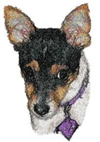 Advanced Embroidery Designs - Rat Terrier
