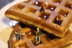 Drilling for Syrup is Better than Drilling for Oil | Flickr - Photo Sharing!