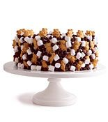 s'mores cake decorated with mini marshmallows, chocolate pieces, and teddy grahams.