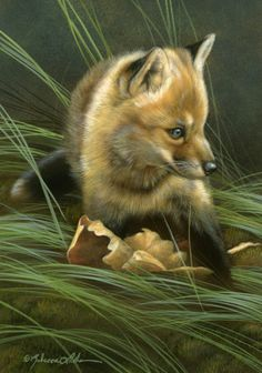 """Unsure - Red Fox Kit, 5"""" x 7"""", watercolor on board, ©Rebecca Latham - The Snowgoose Gallery The Art of the Miniature XXIII"""