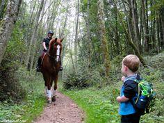 Hiking and horseback riding trails at Bellevue, WA's Anti-Aircraft Peak
