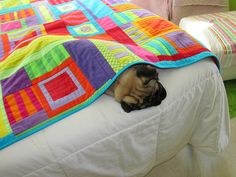 Napquilt in use by Melody Johnson Quilts, via Flickr