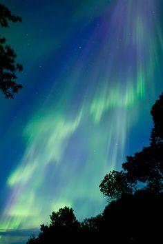 Auroras en Manitoba