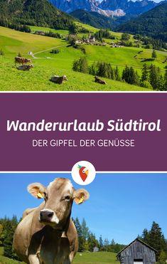 Die beste Zeit für den Wanderurlaub in Südtirol, die besten Reiseziele, günstige Angebote und vieles mehr findet ihr via Urlaubspiraten.de #Südtirol #Urlaub #Wandern #Wanderlust #Tirol
