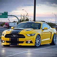 Mustang 😱