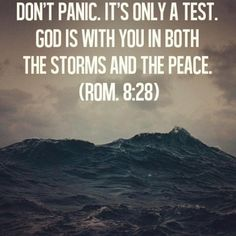 """Praise Him in this storm. """"And we know that in all things God works for the good of those who love him, who have been called according to his purpose."""" Romans 8:28"""