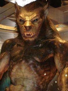 http://images.sodahead.com/polls/000537161/polls_werewolves_0404_822439_answer_2_xlarge.jpeg