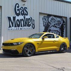 "CarsWithoutLimits on Instagram: ""#Saleen Black Label #Mustang - pic via @speedlist @gasmonkeygarage • #CarsWithoutLimits"""