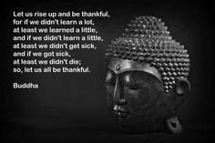 Let us rise up and be thankful, for if we didn't learn a lot at least we learned a little, and if we didn't learn a little, at least we didn't get sick, and if we got sick, at least we didn't die; so, let us all be thankful. ~ Buddha