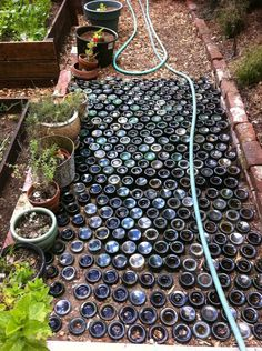 Beer bottles, in your backyard. Ingenious! #Nesting #DIY