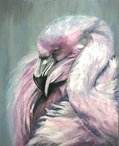 Flamingo by Paul Hardern