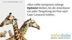 Lebensthemen-Spruch 01 Mental Training, Trainer, Humor, Motivation, Giraffe, Camel, Animals, Life, Giraffes