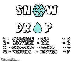 Southern, Northern, and Western blot mnemonic | Aspiring Doctors