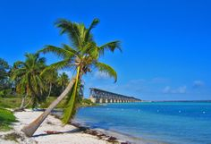 Bahia Honda State Park- One of the most beautiful places in Florida I have ever been to...
