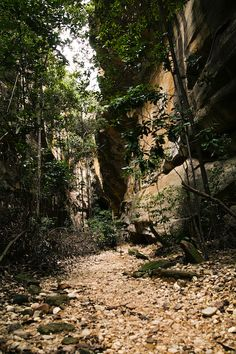 Trilhas que levam aos sítios arqueológicos do Parque Nacional da Serra da Capivara, Piauí