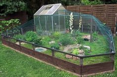 Wonderful Pic Reptile Terrarium habitats Suggestions There is no doubt that will possessing a furry friend brings untold delight in order to another person's life. Tortoise House, Tortoise Habitat, Turtle Habitat, Rabbit Cages, Bunny Cages, Turtle Enclosure, Rabbit Enclosure, Outdoor Tortoise Enclosure, Rabbit Habitat