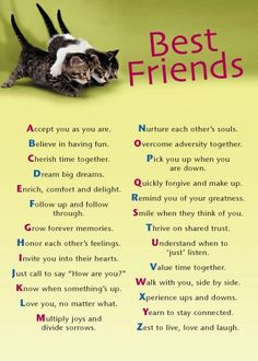 Best friend alphabet poem. This is the exact relationship I have with my BFF! <3 u Amy!!