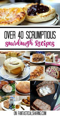 Over 40 Scrumptious Sourdough Recipes | This collection features a variety of different recipes to make with sourdough starter if you have some laying around! #sourdough #recipes #roundup #collection #bread #breakfast