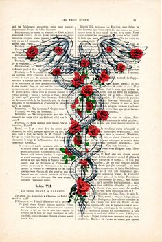 Nurses Week Quotes Discover Caduceus Symbol Medical Art Medicine Rod of Asclepius Poster Doctor Office Art Doctor Symbol Art Print Dr. Medical Drawings, Medical Art, Medical Symbols, Medical Doctor, Medical Tattoos, Medical Careers, Medical Logo, Medical Assistant, Medical Science