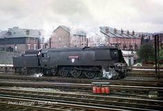 Diesel Locomotive, Steam Locomotive, Steam Trains Uk, Southern Trains, Choo Choo Train, Steam Railway, Southern Railways, British Rail, Steamers