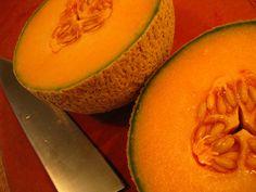 Melon   Flickr - Photo Sharing!