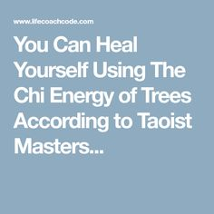 You Can Heal Yourself Using The Chi Energy of Trees According to Taoist Masters...