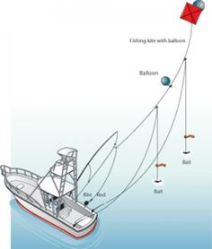 1000 images about fishing rigs  u0026 knots on pinterest