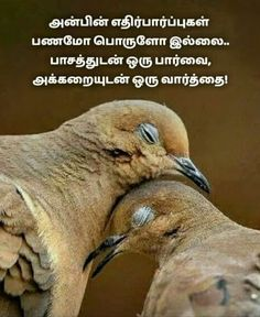Tamil Motivational Quotes, Good Morning Inspirational Quotes, Good Thoughts Quotes, Good Morning Quotes, Mommy Quotes, Dad Quotes, Real Life Quotes, Morning Motivation Quotes, Situation Quotes