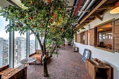 Google Office,Tel Aviv / Google / Works / Home - Camenzind Evolution