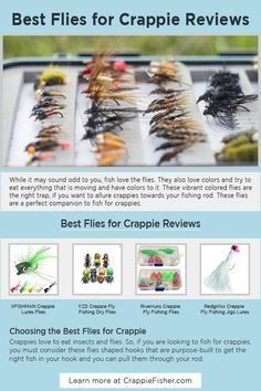 Best Flies for Crappie: These vibrant colored flies are the right trap if you want to allure crappies towards your fishing rod. These flies are a perfect companion to fish for crappies. you must consider these flies shaped hooks that are purpose-built to get the right fish in your hook and you can pull them through your rod. Crappie Lures, Crappie Fishing Tips, Fishing Jig, Saltwater Fishing, Trout, Hooks, Purpose, Vibrant, Eat