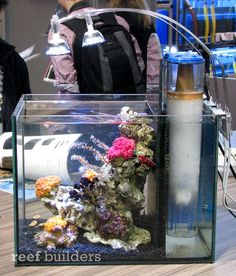 LED Nano Reef from AquaMedic is a huge hit at InterZoo 2010