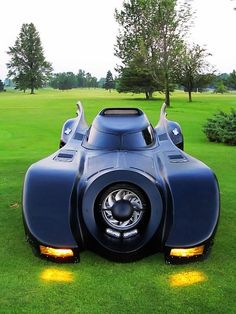 Fantastical Grazing Batmobile
