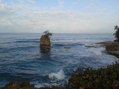 Playa Manzanillo, Limon, Costa Rica