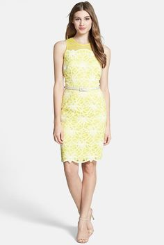 Image of Maggy London Belted Embroidered Lace Sheath Dress