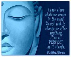Buddha image from Buddha Bless You. Buddha Zen, Buddha Quote, Self Realization, Introvert, Infj, Buddhism, Beautiful Words, Namaste, Karma