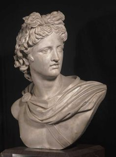 Apollo Belvedere, ca.1799 Copy of the head of the original in the Vatican. Marble, 66.1 x 56.2 x 40 cm. Gift of Henry Pickering, 1824. Boston Athenaeum