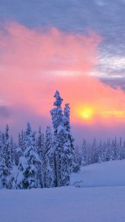 ✯ Winter In parts of Washington state, USA