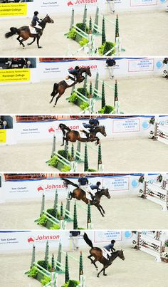 Good picture of horse pushing off the back feet and landing hard on the fronts.... Exactly why you don't jump every day