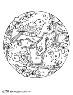 Cherry Blossom Bird Coloring Page For Adults