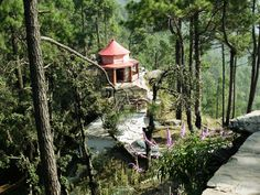 Kasar Devi/Crank's Ridge, Uttarakhand 15 Underrated Destinations In India Every Traveler Must Check Out India Destinations, Holiday Destinations, Beautiful Places To Visit, Beautiful World, Places To Travel, Places To See, India Travel, India Trip, Visit India